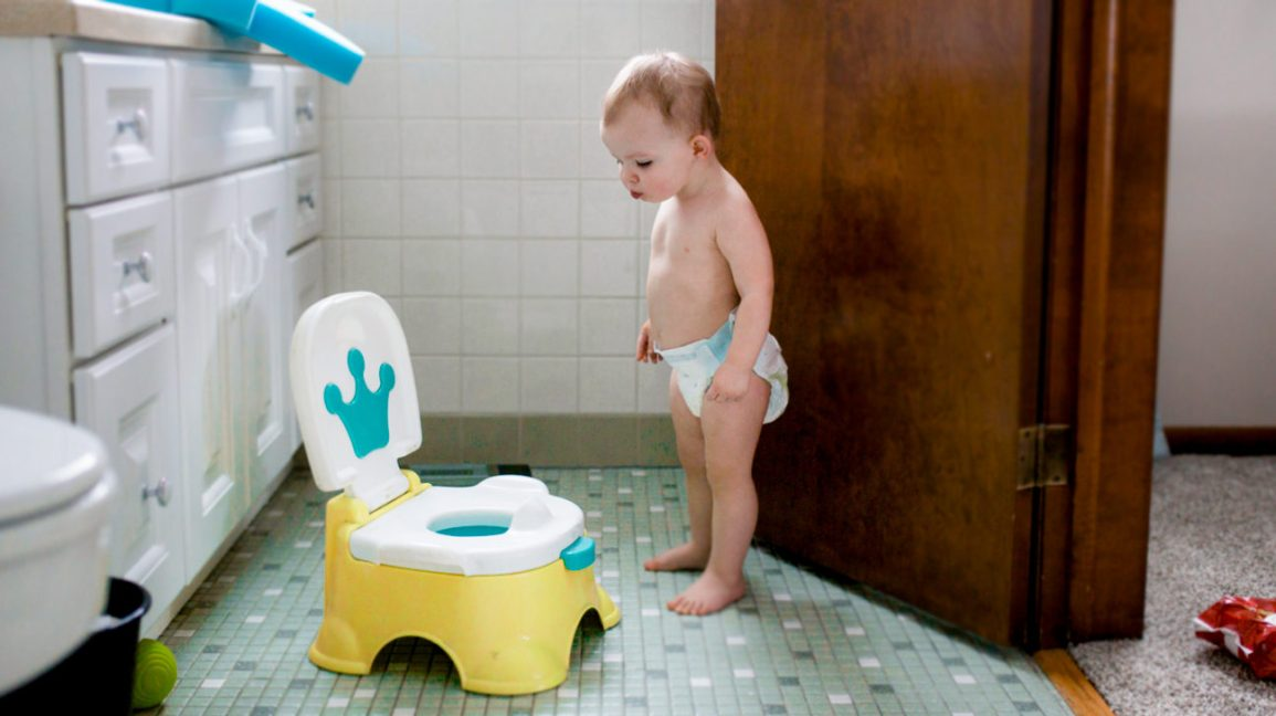 potty training regression tips